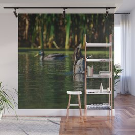 Mallards Tails Up Wall Mural