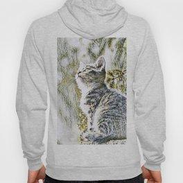 Animal ArtStudio 219 Cat Hoody