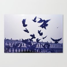 Italian Birds.  Canvas Print