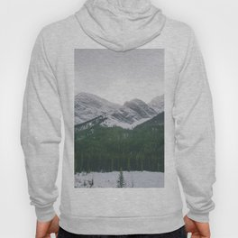 Sun Over The Trees Hoody
