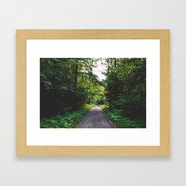 Path2 Framed Art Print