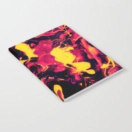 Landing Notebook