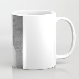 Desert Beetle Coffee Mug