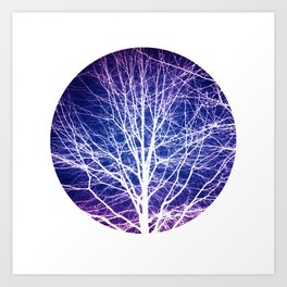 Surreal nature photography of a bare tree in purple and blue Art Print