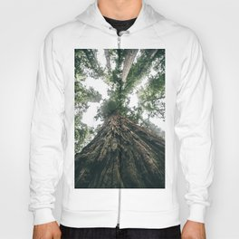 California Redwoods Hoody