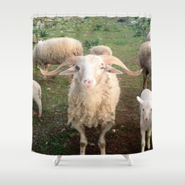A Flock Of Sheep In A Rural Setting Shower Curtain