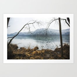 Radnor Lake in Summer Art Print