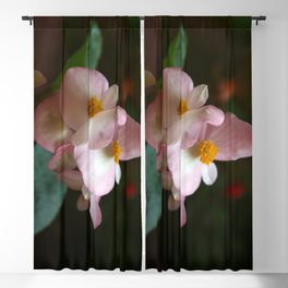 Wax Begonia Flowers Blackout Curtain