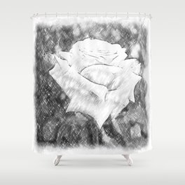 Pink Roses in Anzures 6 Charcoal Shower Curtain