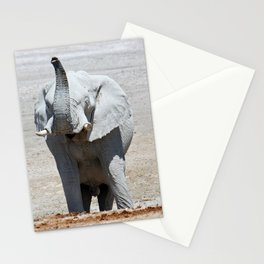 NAMIBIA ... Elephant fun III Stationery Cards