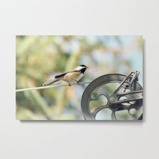 Chick on a line Metal Print