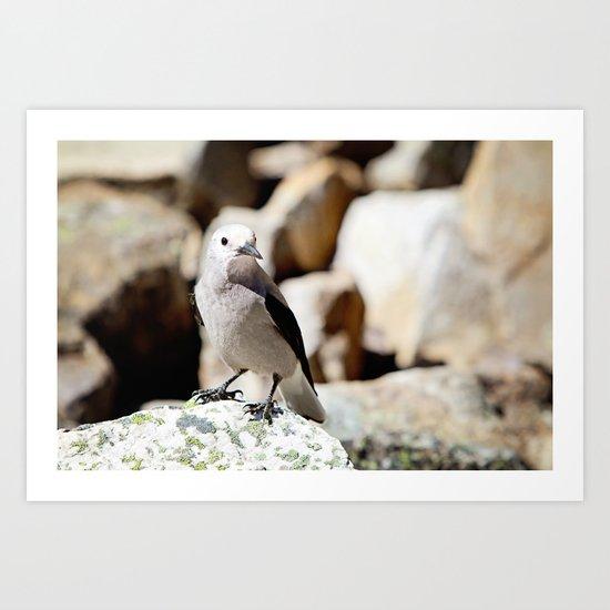 I'm bird and I'm happy Art Print