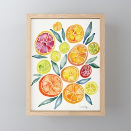 Sliced Citrus Watercolor Framed Mini Art Print