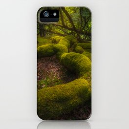 Magical forest - Ireland (RR237) iPhone Case