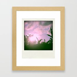 Italian sun Framed Art Print