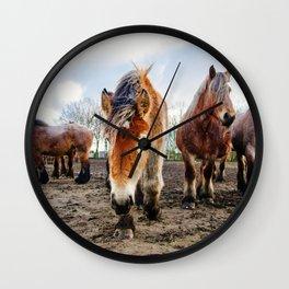 Belgian Draft Horse Wall Clock
