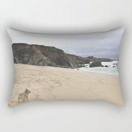 Roskoe Rectangular Pillow