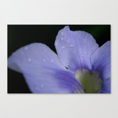 Catching raindrops Canvas Print