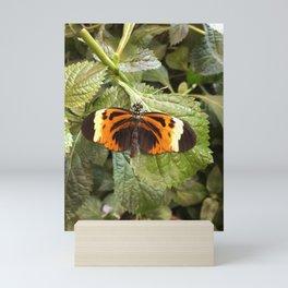 Black and Orange Beauty #3 Mini Art Print