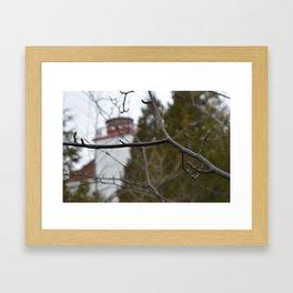 Dyers Bay  Framed Art Print