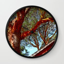 MADRONA TREES AND RED BARN ROOFLINE 2 SAN JUAN ISLANDS Wall Clock