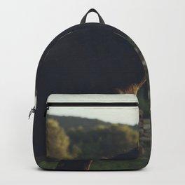 Wild stallion photo, black horse and italian sunset, original print for animal lovers, landscape Backpack