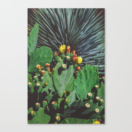 Wild Blooms Canvas Print