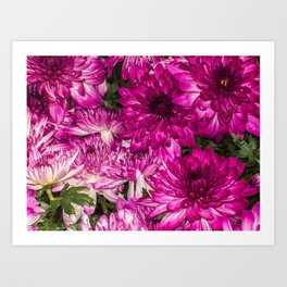 The Momma Flowers Taking Care Of Babies Art Print