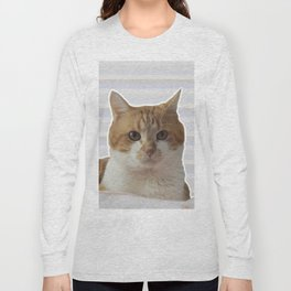 Red cat on a striped background. Long Sleeve T-shirt