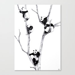 The Panda Tree Canvas Print