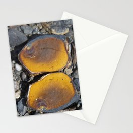 Matched Stationery Cards