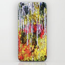 Glorious Colors iPhone Skin