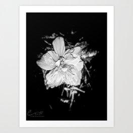 Tanto Amor IV Art Print
