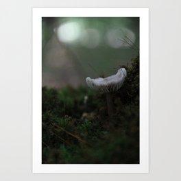 Abstract Nature II Art Print