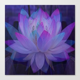 The Lotus in blue... Canvas Print