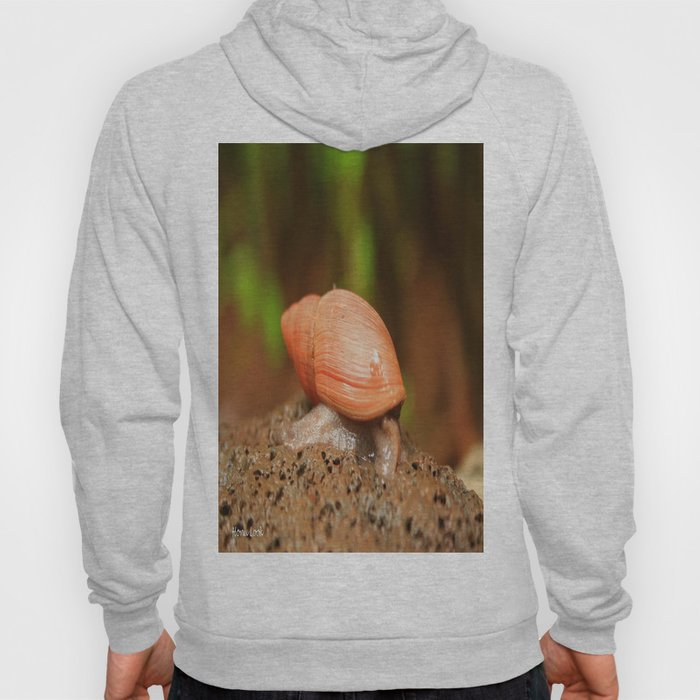 Slow and steady wins the race Hoody