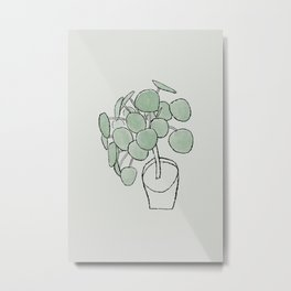 Pilea peperomioides Houseplant Drawing Metal Print