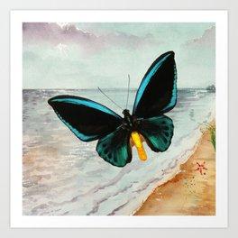 Birdwing In Flight Art Print