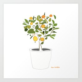 Orange tree in pot Art Print