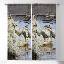 African Nile Crocodile Face, Wildlife, Ethiopia, Africa Blackout Curtain