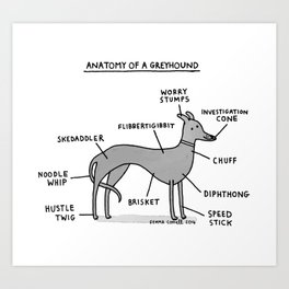 Anatomy of a Greyhound Art Print