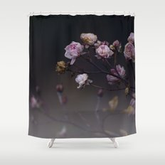 Delicate Dried Pink Mini Roses on Smoky Dark Grey Shower Curtain