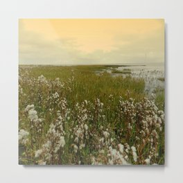 Country by the sea Metal Print