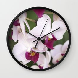 Longwood Gardens Orchid Extravaganza 2 Wall Clock