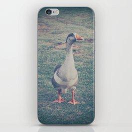 Vintage Goose iPhone Skin