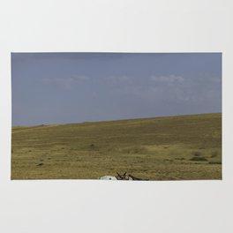 A Nomads Horse Rug