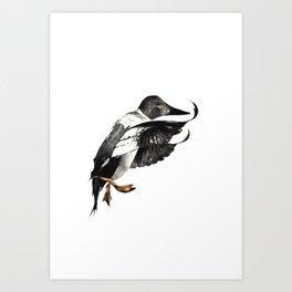 Goldeneye Duck Art Print