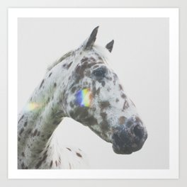 THE SPOTTED HORSE Art Print