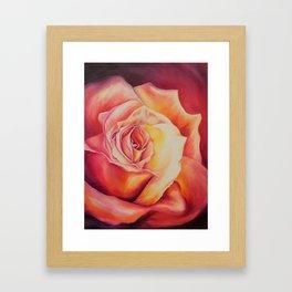 Sunset Rose Framed Art Print