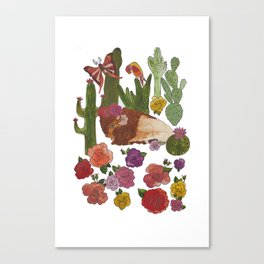 Buffalo Cacti Canvas Print